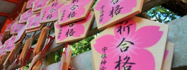 桜を彩った合格祈願のたくさんの絵馬